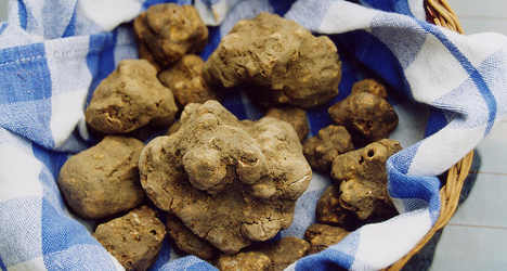Chinese woman spends €90k on an Italian truffle