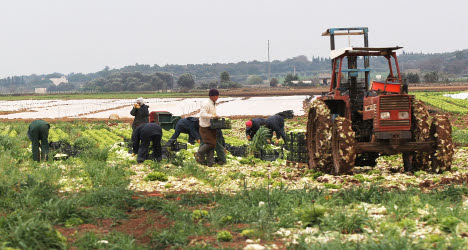 Foreign farm workers are 'treated like slaves'