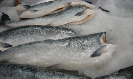 Tourists in Italy sold old fish and fake champagne