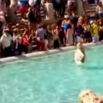 Ekberg wannabe dragged out of Rome's Trevi Fountain