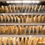 Italy nabs criminal gang responsible for cheese and wine heists
