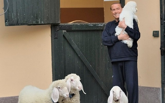 Berlusconi hopes to turn love for animals into votes with new pet project