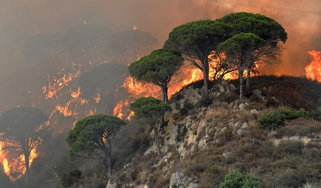 Italy wildfires: Homes evacuated in Rome and Naples as police arrest four suspected arsonists