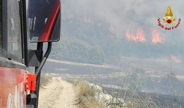Dozens of animals killed, farms destroyed after a weekend of fires in Sicily