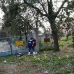 Poland calls for extradition of Italy gang-rape suspects
