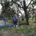 Four arrested over gang rapes in Italian seaside town