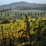 TRAVEL: Eight of the best destinations for an autumn break in Italy