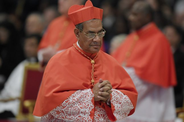 Pope can help but Rohingya 'have to go back': Cardinal