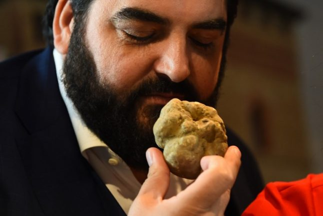 White truffles sell for €75,000 euros at auction in Italy