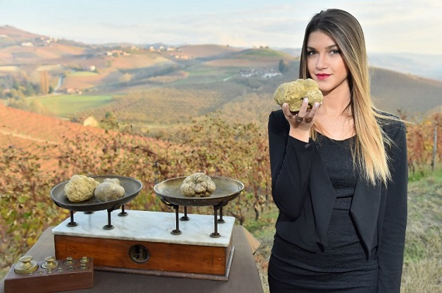 White truffle prices reach an all-time high in Italy