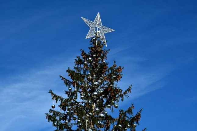 Rome's 'mangy' Christmas tree offered eternal life