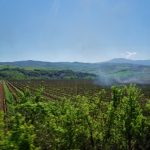Weekend Wanderlust: Siena and a steam train ride through wine country