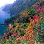 Six unmistakable signs that spring has arrived in Italy
