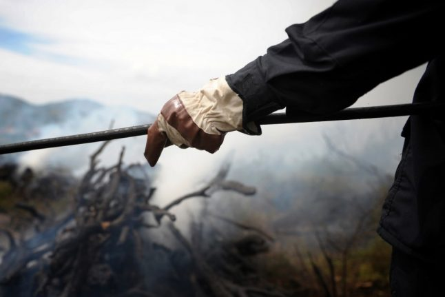 Italian students fined €27 million for barbecue that started forest fire