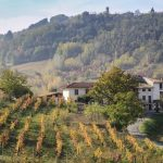Agriturismo: Italian region declares only local wines can be served to tourists