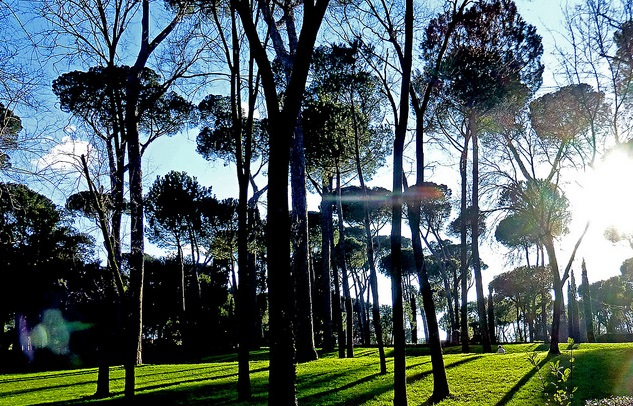 Rome begins €12 million makeover of the city's parks and gardens