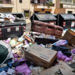 'Disgusting dumpsters': Rome garbage crisis sparks health fears