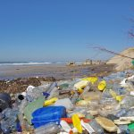'I was shocked': How Sicily's foreign residents are fighting plastic pollution on the beach