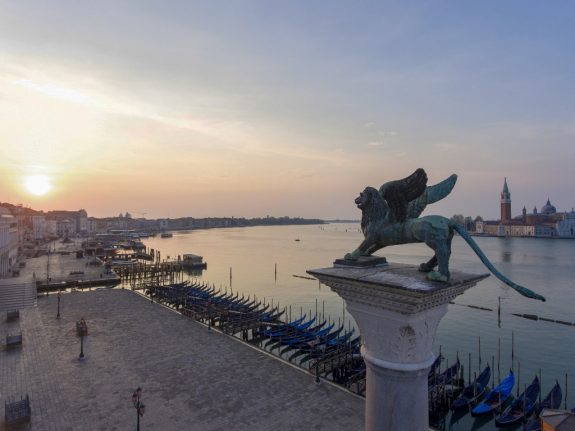 'Like being on a coral reef': Marine life returns to heart of Venice in Italy's lockdown