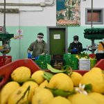 Italy flies in foreign workers to help pick its crops