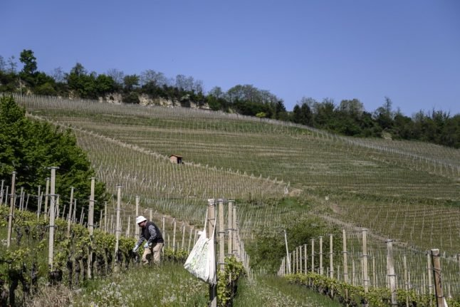 How the coronavirus crisis has hit Piedmont's wineries – and how you can help