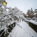 IN PHOTOS: First snowfalls of season turn northern Italy white