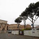 How insect invaders are threatening Rome's iconic pines