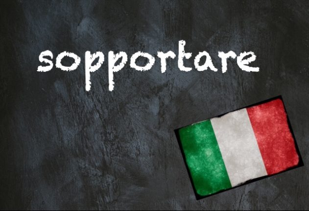 Italian word of the day: 'Sopportare'