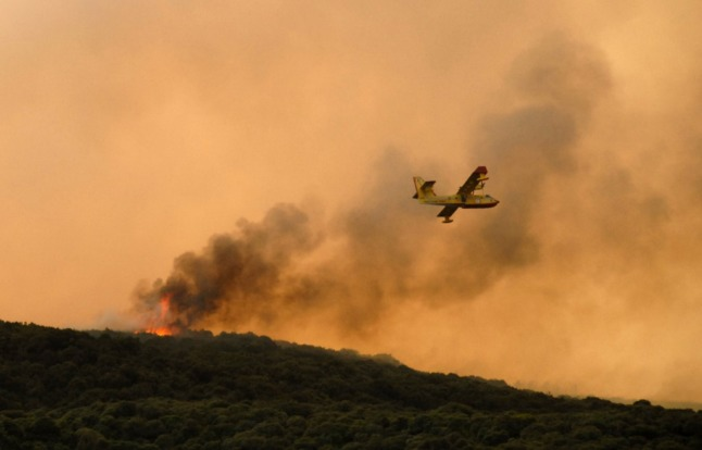 'A disaster without precedent': Sardinia wildfires ravage west of Italian island
